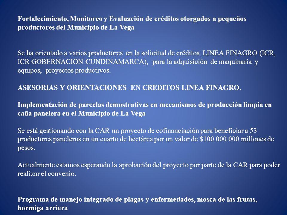Fortalecimiento, Monitoreo y Evaluación de créditos otorgados a pequeños productores del Municipio de La Vega Se ha orientado a varios productores en