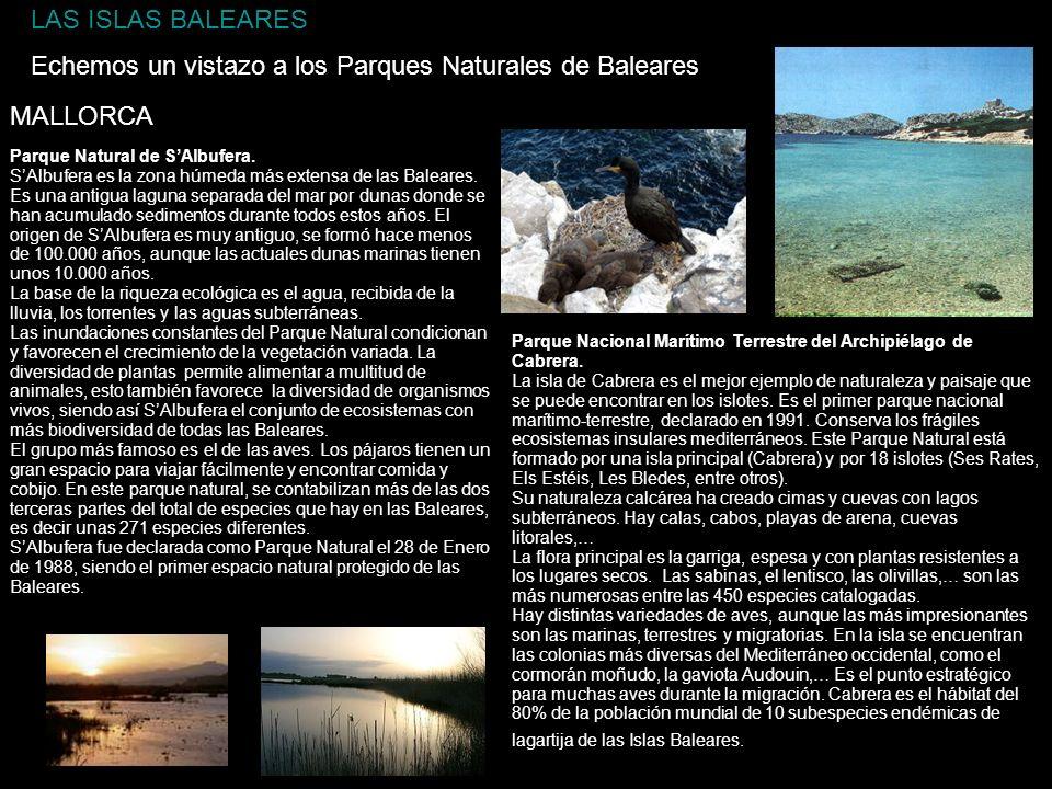 LAS ISLAS BALEARES Echemos un vistazo a los Parques Naturales de Baleares Parque Natural de SAlbufera. SAlbufera es la zona húmeda más extensa de las