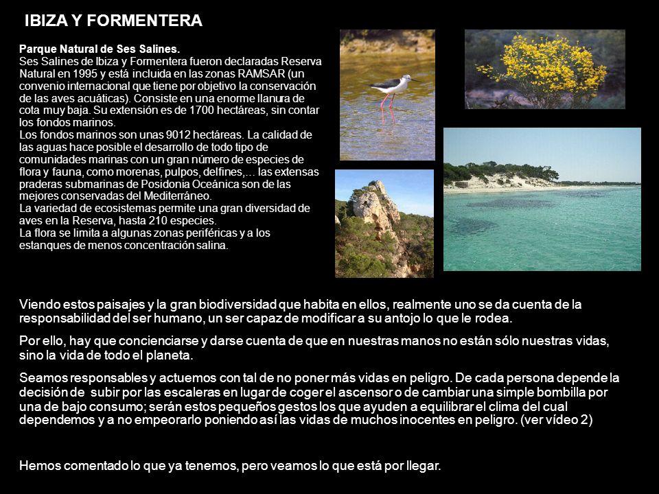IBIZA Y FORMENTERA Parque Natural de Ses Salines. Ses Salines de Ibiza y Formentera fueron declaradas Reserva Natural en 1995 y está incluida en las z