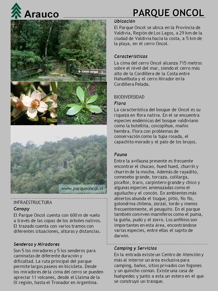 PARQUE JORGE ALESSANDRI Ubicación El Parque Oncol se ubica en la Provincia de Valdivia, Región de Los Lagos, a 29 km de la ciudad de Valdivia hacia la costa, a 5 km de la playa, en el cerro Oncol.