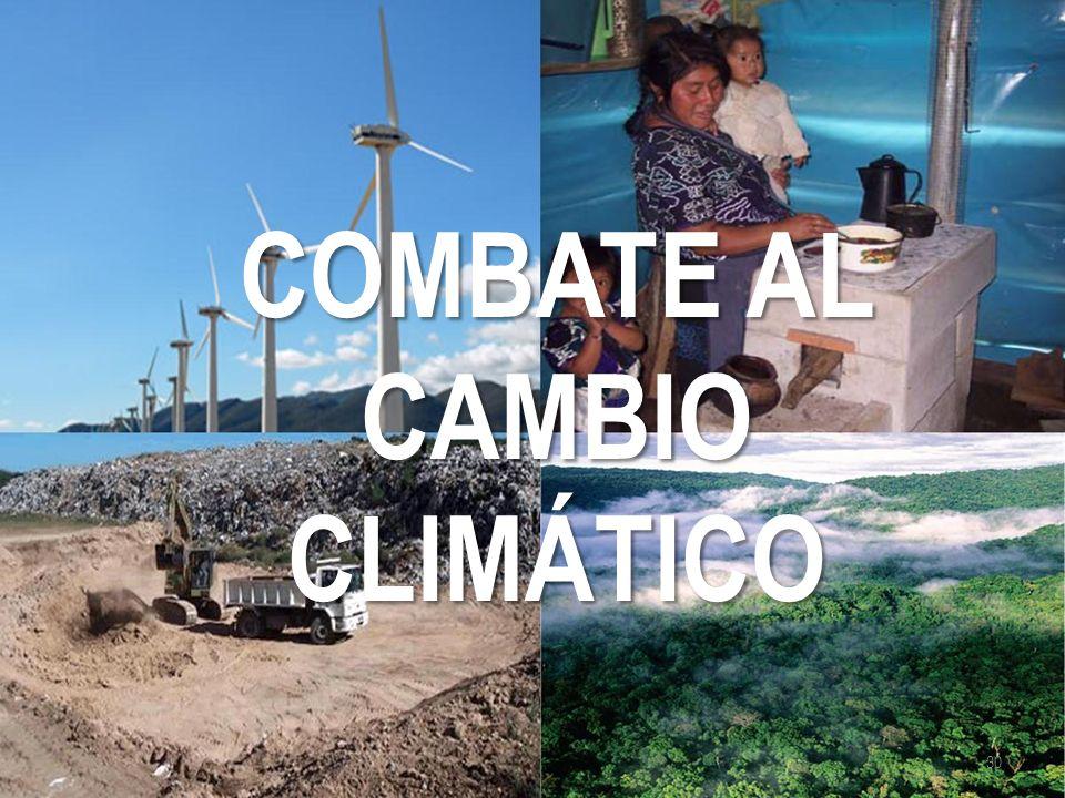 COMBATE AL CAMBIO CLIMÁTICO 30