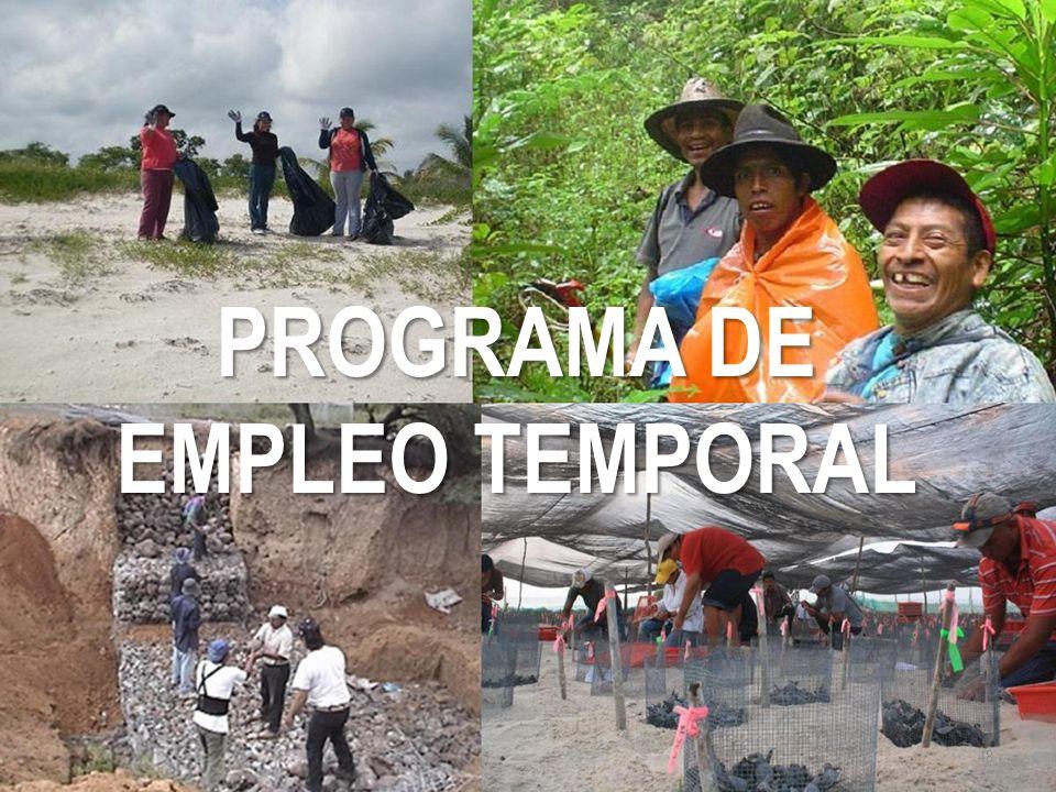 PROGRAMA DE EMPLEO TEMPORAL 48