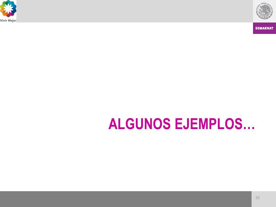 ALGUNOS EJEMPLOS… 55