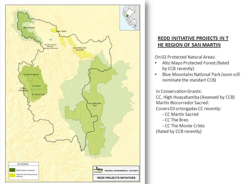 REDD INITIATIVE PROJECTS IN T HE REGION OF SAN MARTIN On 02 Protected Natural Areas: Alto Mayo Protected Forest (Rated by CCB recently) Blue Mountains National Park (soon will nominate the standart CCB) In Conservation Grants: CC.