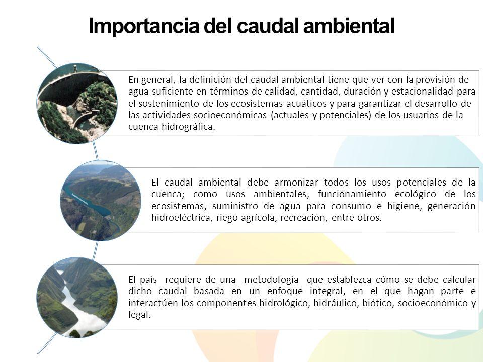 Importancia del caudal ambiental En general, la definición del caudal ambiental tiene que ver con la provisión de agua suficiente en términos de calid