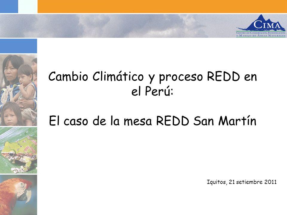 Resumen de la presentación 1.Perú frente al Cambio Climático 2.El Proceso REDD en Perú 3.Mesa Regionales: Mesa REDD San Martín 4.Conclusiones y Próximos pasos
