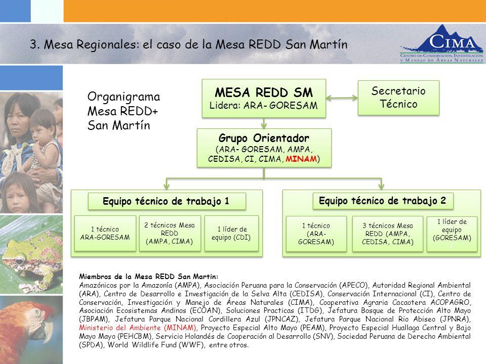MESA REDD SM Lidera: ARA- GORESAM MESA REDD SM Lidera: ARA- GORESAM Grupo Orientador (ARA- GORESAM, AMPA, CEDISA, CI, CIMA, MINAM) Grupo Orientador (A