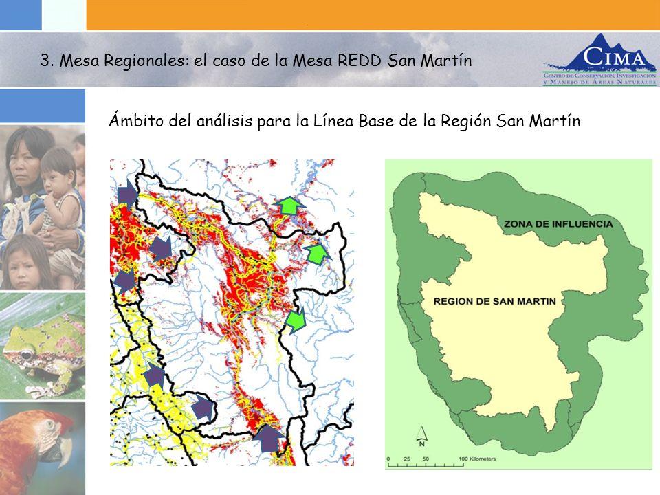 3. Mesa Regionales: el caso de la Mesa REDD San Martín Ámbito del análisis para la Línea Base de la Región San Martín