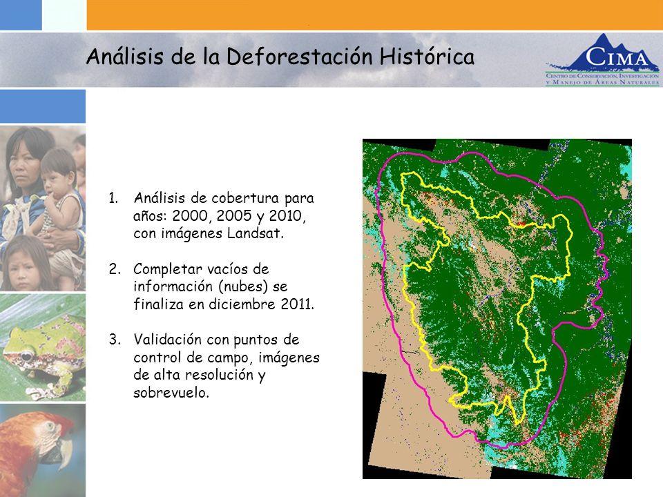 1.Análisis de cobertura para años: 2000, 2005 y 2010, con imágenes Landsat. 2.Completar vacíos de información (nubes) se finaliza en diciembre 2011. 3