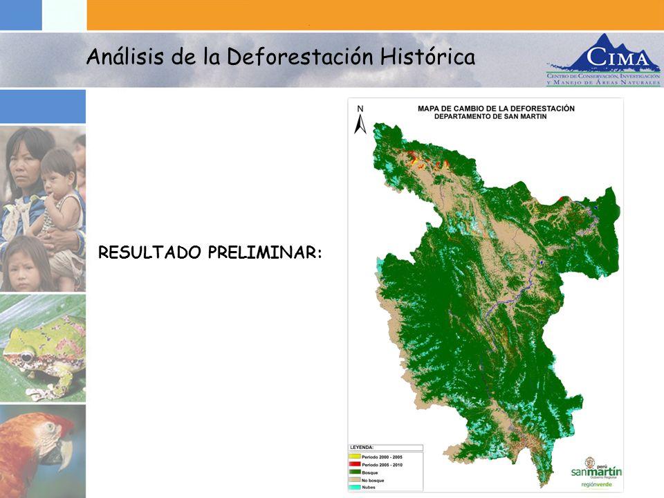 RESULTADO PRELIMINAR: Análisis de la Deforestación Histórica