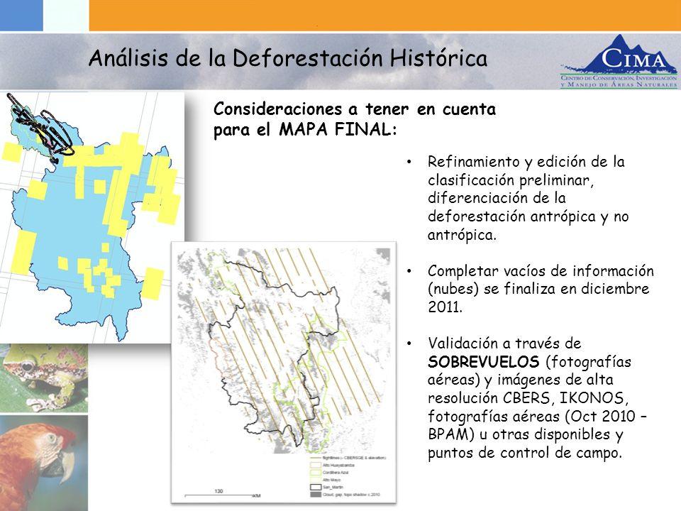 Refinamiento y edición de la clasificación preliminar, diferenciación de la deforestación antrópica y no antrópica. Completar vacíos de información (n