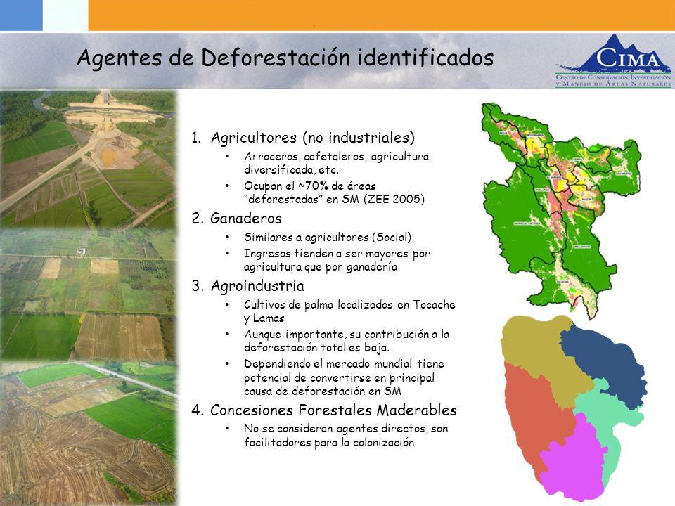 1.Agricultores (no industriales) Arroceros, cafetaleros, agricultura diversificada, etc. Ocupan el ~70% de áreas deforestadas en SM (ZEE 2005) 2.Ganad