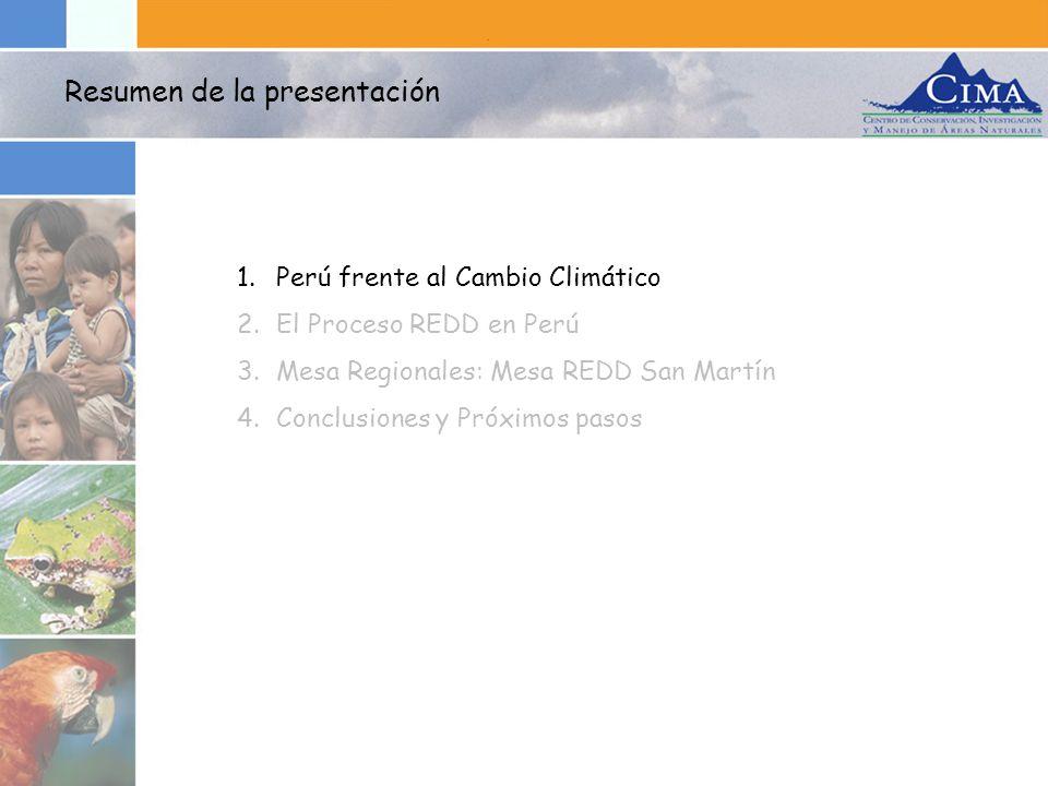 Resumen de la presentación 1.Perú frente al Cambio Climático 2.El Proceso REDD en Perú 3.Mesa Regionales: Mesa REDD San Martín 4.Conclusiones y Próxim