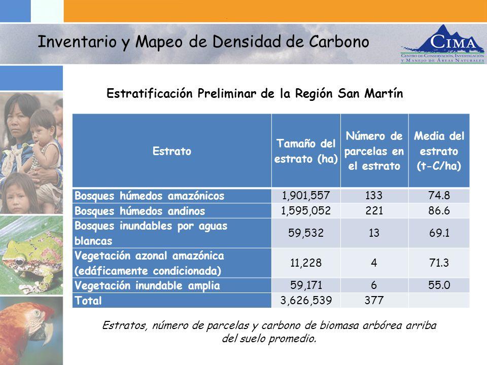 Estrato Tamaño del estrato (ha) Número de parcelas en el estrato Media del estrato (t-C/ha) Bosques húmedos amazónicos1,901,55713374.8 Bosques húmedos