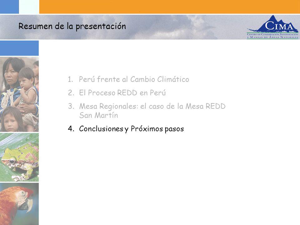 1.Perú frente al Cambio Climático 2.El Proceso REDD en Perú 3.Mesa Regionales: el caso de la Mesa REDD San Martín 4.Conclusiones y Próximos pasos Resu