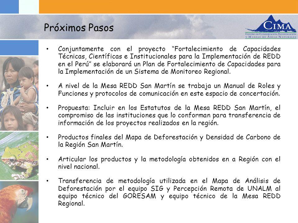 Conjuntamente con el proyecto Fortalecimiento de Capacidades Técnicas, Científicas e Institucionales para la Implementación de REDD en el Perú se elab