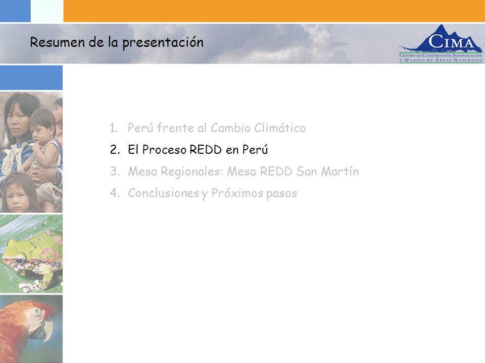 1.Perú frente al Cambio Climático 2.El Proceso REDD en Perú 3.Mesa Regionales: Mesa REDD San Martín 4.Conclusiones y Próximos pasos Resumen de la pres