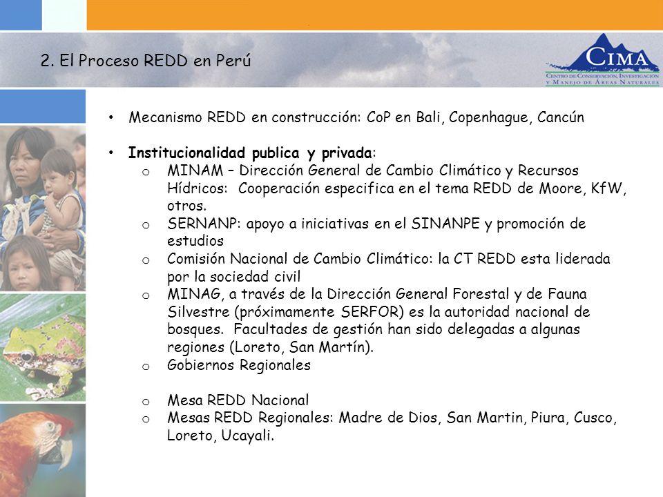 Conjuntamente con el proyecto Fortalecimiento de Capacidades Técnicas, Científicas e Institucionales para la Implementación de REDD en el Perú se elaborará un Plan de Fortalecimiento de Capacidades para la Implementación de un Sistema de Monitoreo Regional.