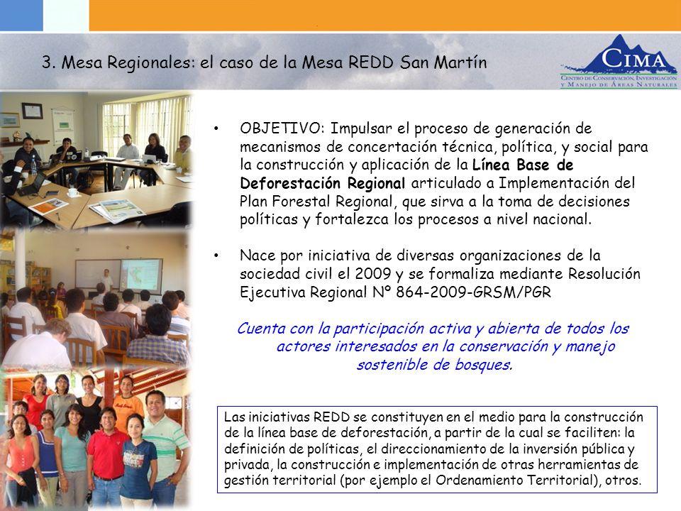 MESA REDD SM Lidera: ARA- GORESAM MESA REDD SM Lidera: ARA- GORESAM Grupo Orientador (ARA- GORESAM, AMPA, CEDISA, CI, CIMA, MINAM) Grupo Orientador (ARA- GORESAM, AMPA, CEDISA, CI, CIMA, MINAM) Equipo técnico de trabajo 1 1 técnico ARA-GORESAM 1 técnico ARA-GORESAM 2 técnicos Mesa REDD (AMPA, CIMA) 2 técnicos Mesa REDD (AMPA, CIMA) 1 líder de equipo (CDI) Equipo técnico de trabajo 2 1 técnico (ARA- GORESAM) 1 técnico (ARA- GORESAM) 3 técnicos Mesa REDD (AMPA, CEDISA, CIMA) Secretario Técnico 1 líder de equipo (GORESAM) ( Miembros de la Mesa REDD San Martin: Amazónicos por la Amazonía (AMPA), Asociación Peruana para la Conservación (APECO), Autoridad Regional Ambiental (ARA), Centro de Desarrollo e Investigación de la Selva Alta (CEDISA), Conservación Internacional (CI), Centro de Conservación, Investigación y Manejo de Áreas Naturales (CIMA), Cooperativa Agraria Cacaotera ACOPAGRO, Asociación Ecosistemas Andinos (ECOAN), Soluciones Practicas (ITDG), Jefatura Bosque de Protección Alto Mayo (JBPAM), Jefatura Parque Nacional Cordillera Azul (JPNCAZ), Jefatura Parque Nacional Rio Abiseo (JPNRA), Ministerio del Ambiente (MINAM), Proyecto Especial Alto Mayo (PEAM), Proyecto Especial Huallaga Central y Bajo Mayo Mayo (PEHCBM), Servicio Holandés de Cooperación al Desarrollo (SNV), Sociedad Peruana de Derecho Ambiental (SPDA), World Wildlife Fund (WWF), entre otros.