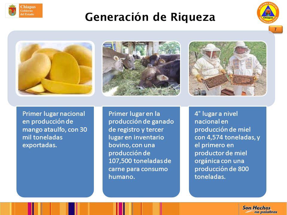7 Generación de Riqueza Primer lugar nacional en producción de mango ataulfo, con 30 mil toneladas exportadas.