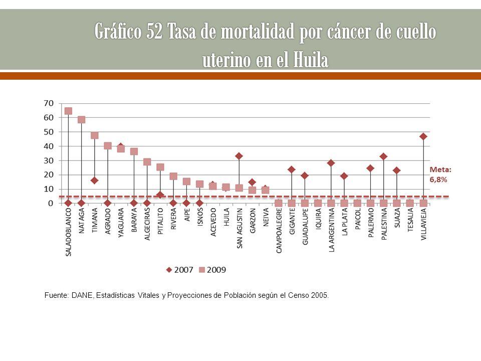 Fuente: DANE, Estadísticas Vitales y Proyecciones de Población según el Censo 2005.