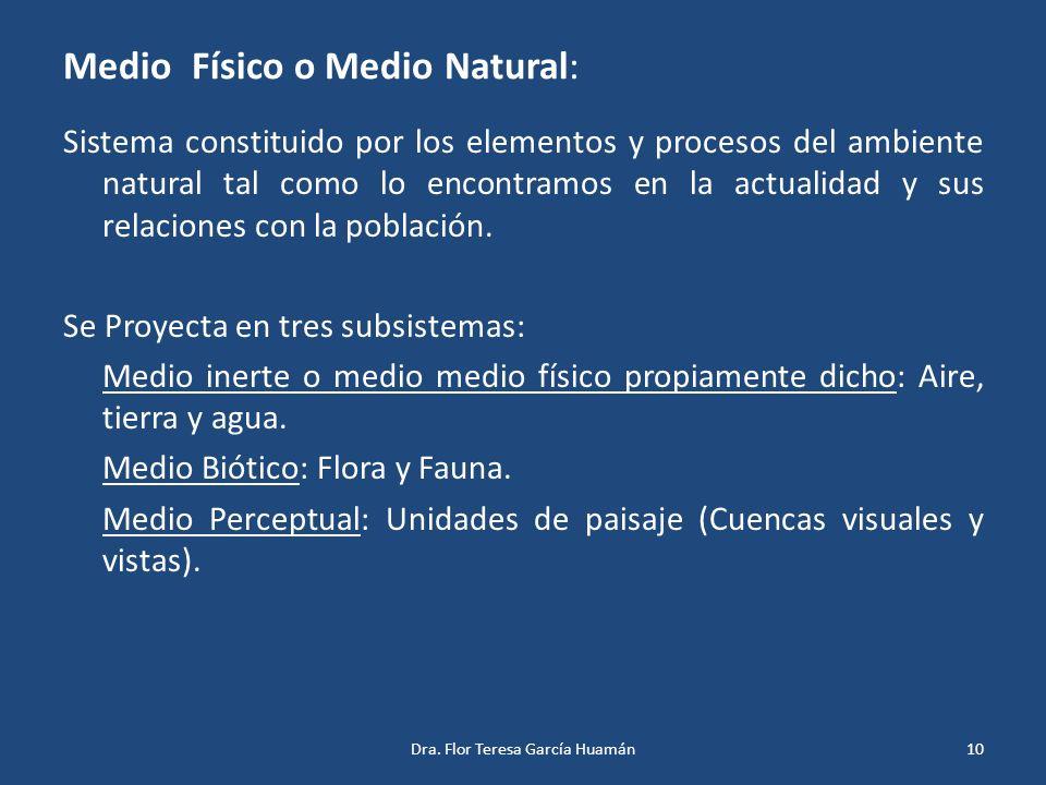 Medio Físico o Medio Natural: Sistema constituido por los elementos y procesos del ambiente natural tal como lo encontramos en la actualidad y sus rel