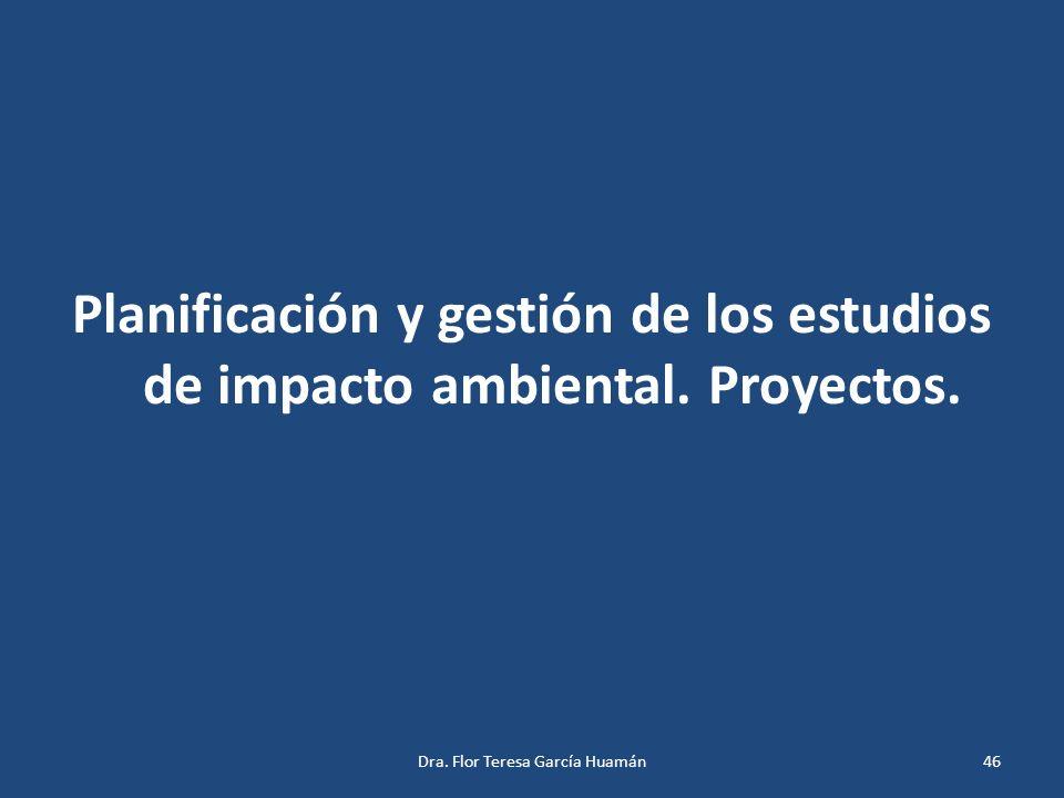 Planificación y gestión de los estudios de impacto ambiental. Proyectos. 46Dra. Flor Teresa García Huamán