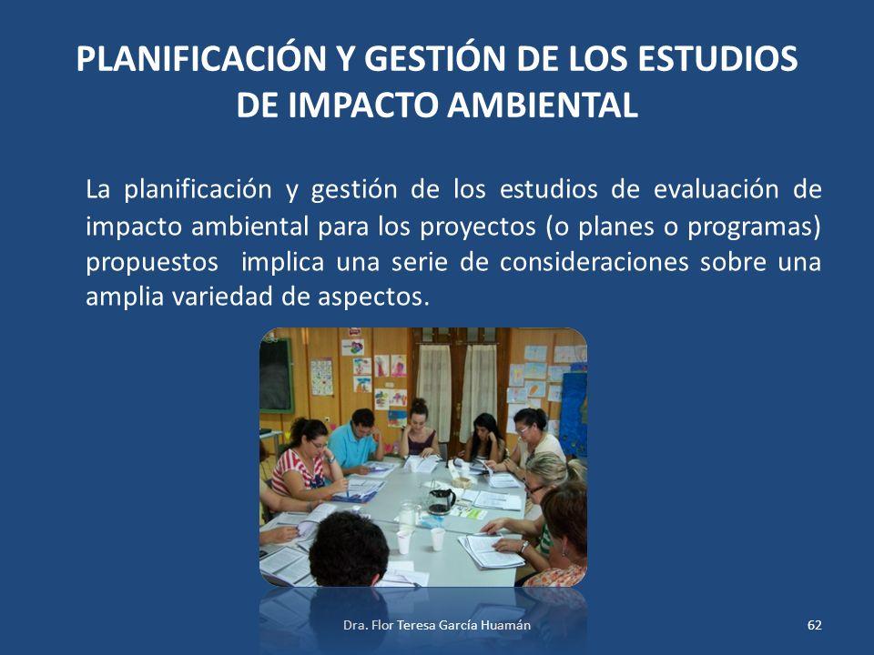 PLANIFICACIÓN Y GESTIÓN DE LOS ESTUDIOS DE IMPACTO AMBIENTAL La planificación y gestión de los estudios de evaluación de impacto ambiental para los pr