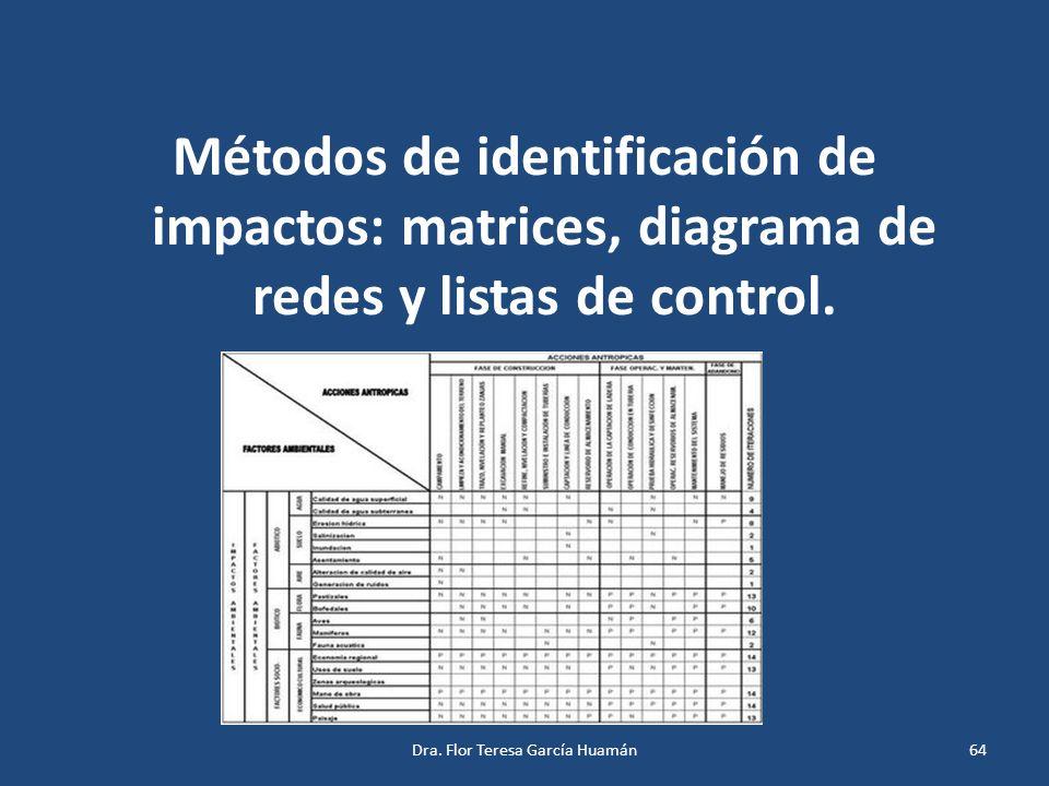 Métodos de identificación de impactos: matrices, diagrama de redes y listas de control. Dra. Flor Teresa García Huamán64