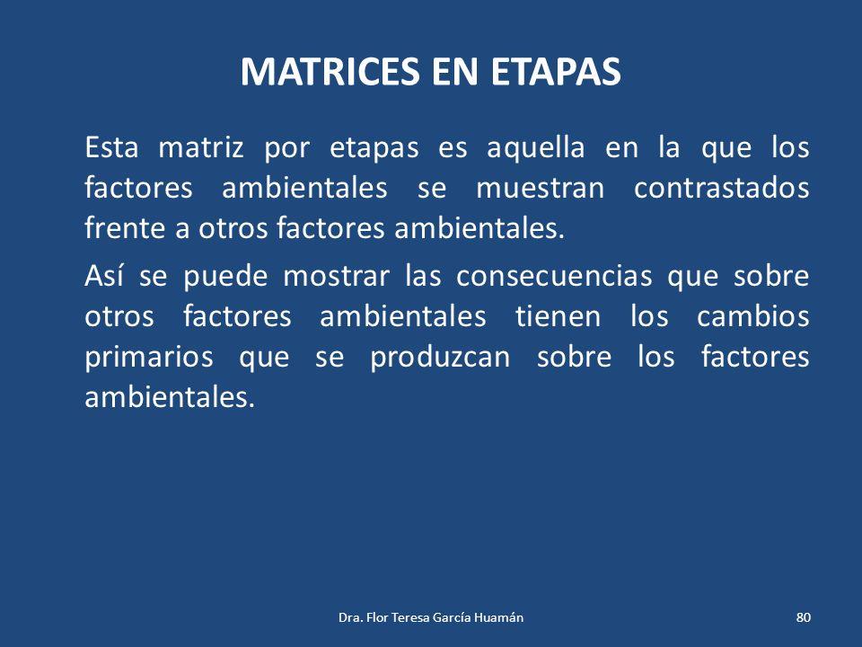 MATRICES EN ETAPAS Esta matriz por etapas es aquella en la que los factores ambientales se muestran contrastados frente a otros factores ambientales.