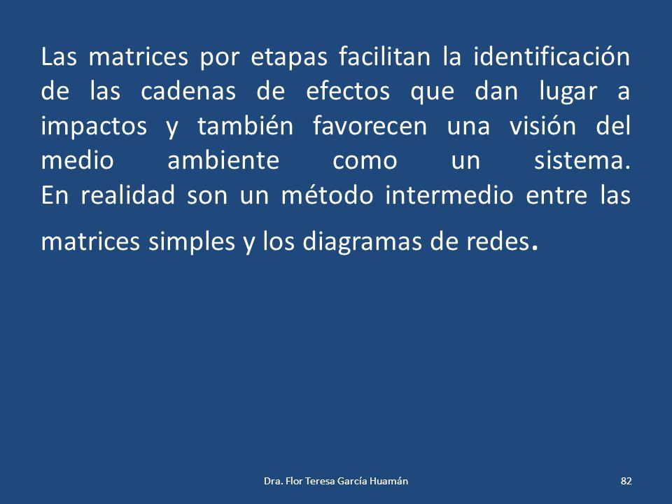 Las matrices por etapas facilitan la identificación de las cadenas de efectos que dan lugar a impactos y también favorecen una visión del medio ambien