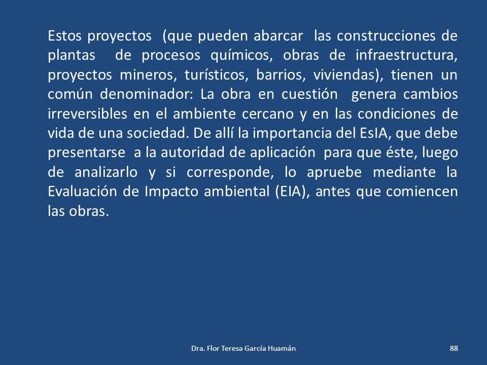 Estos proyectos (que pueden abarcar las construcciones de plantas de procesos químicos, obras de infraestructura, proyectos mineros, turísticos, barri