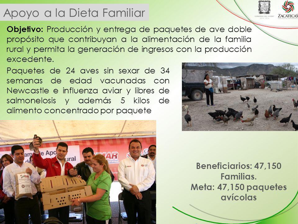 Apoyo a la Dieta Familiar Objetivo: Producción y entrega de paquetes de ave doble propósito que contribuyan a la alimentación de la familia rural y permita la generación de ingresos con la producción excedente.