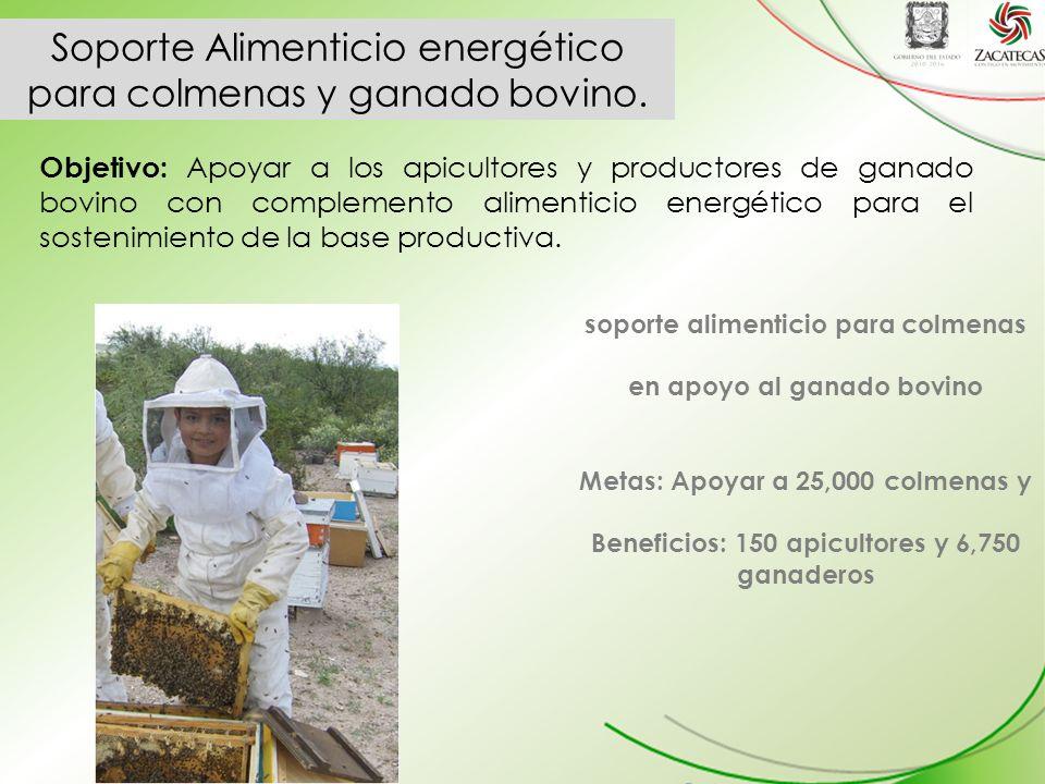 Objetivo: Apoyar a los apicultores y productores de ganado bovino con complemento alimenticio energético para el sostenimiento de la base productiva.