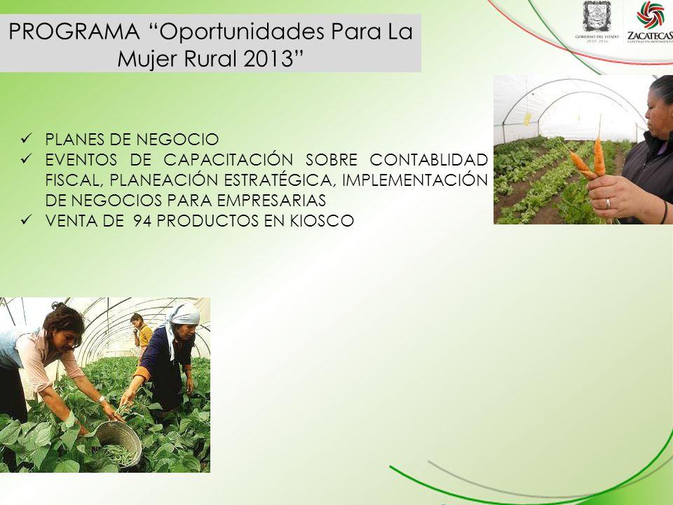 PROGRAMA Oportunidades Para La Mujer Rural 2013 PLANES DE NEGOCIO EVENTOS DE CAPACITACIÓN SOBRE CONTABLIDAD FISCAL, PLANEACIÓN ESTRATÉGICA, IMPLEMENTACIÓN DE NEGOCIOS PARA EMPRESARIAS VENTA DE 94 PRODUCTOS EN KIOSCO