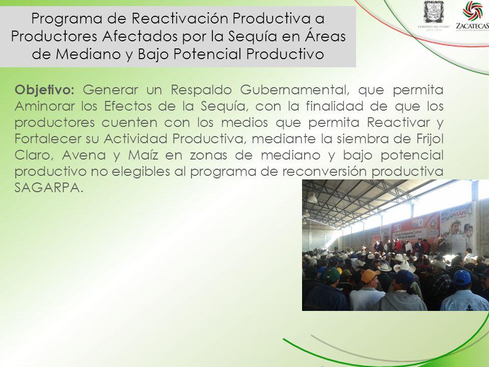 Programa de Reactivación Productiva a Productores Afectados por la Sequía en Áreas de Mediano y Bajo Potencial Productivo Objetivo: Generar un Respaldo Gubernamental, que permita Aminorar los Efectos de la Sequía, con la finalidad de que los productores cuenten con los medios que permita Reactivar y Fortalecer su Actividad Productiva, mediante la siembra de Frijol Claro, Avena y Maíz en zonas de mediano y bajo potencial productivo no elegibles al programa de reconversión productiva SAGARPA.