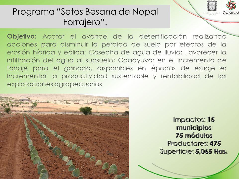 Programa Setos Besana de Nopal Forrajero.