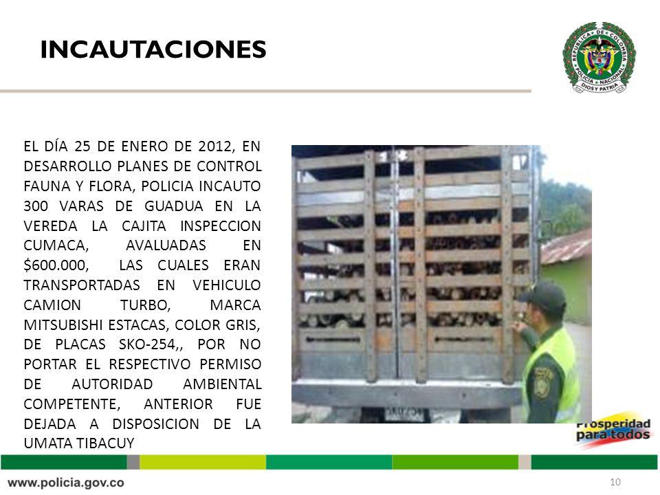 INCAUTACIONES 10 EL DÍA 25 DE ENERO DE 2012, EN DESARROLLO PLANES DE CONTROL FAUNA Y FLORA, POLICIA INCAUTO 300 VARAS DE GUADUA EN LA VEREDA LA CAJITA INSPECCION CUMACA, AVALUADAS EN $600.000, LAS CUALES ERAN TRANSPORTADAS EN VEHICULO CAMION TURBO, MARCA MITSUBISHI ESTACAS, COLOR GRIS, DE PLACAS SKO-254,, POR NO PORTAR EL RESPECTIVO PERMISO DE AUTORIDAD AMBIENTAL COMPETENTE, ANTERIOR FUE DEJADA A DISPOSICION DE LA UMATA TIBACUY