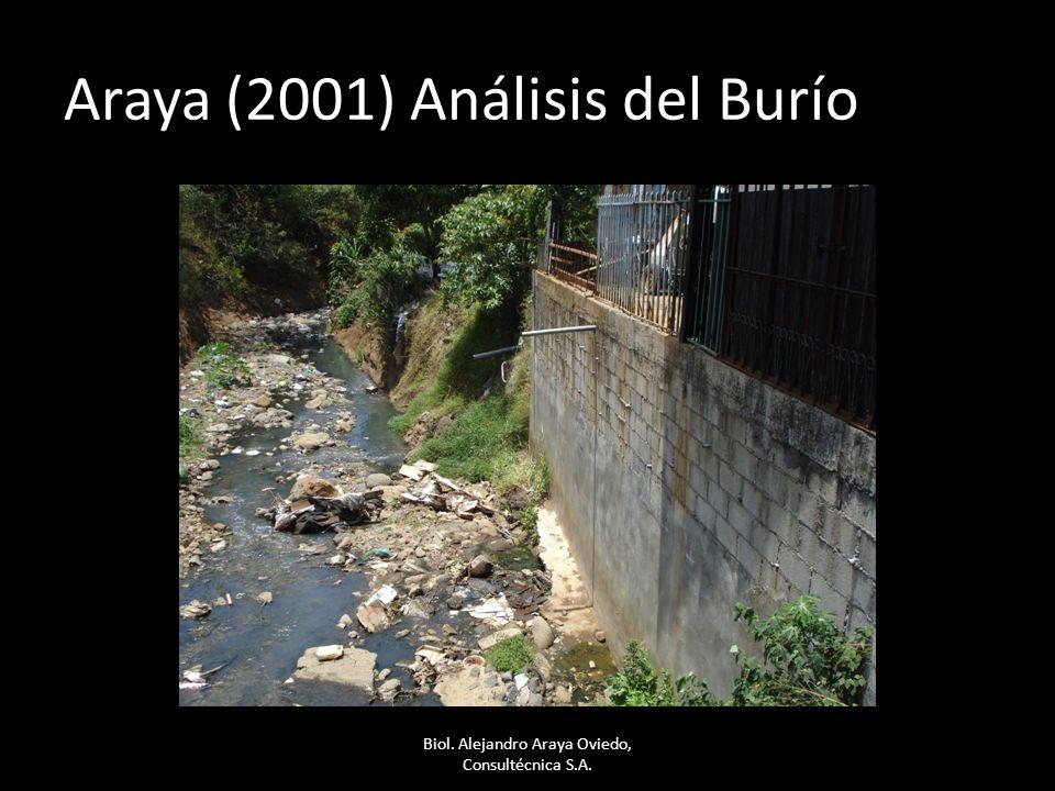Araya (2001) Análisis del Burío Biol. Alejandro Araya Oviedo, Consultécnica S.A.