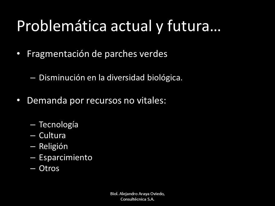 Problemática actual y futura… Fragmentación de parches verdes – Disminución en la diversidad biológica. Demanda por recursos no vitales: – Tecnología