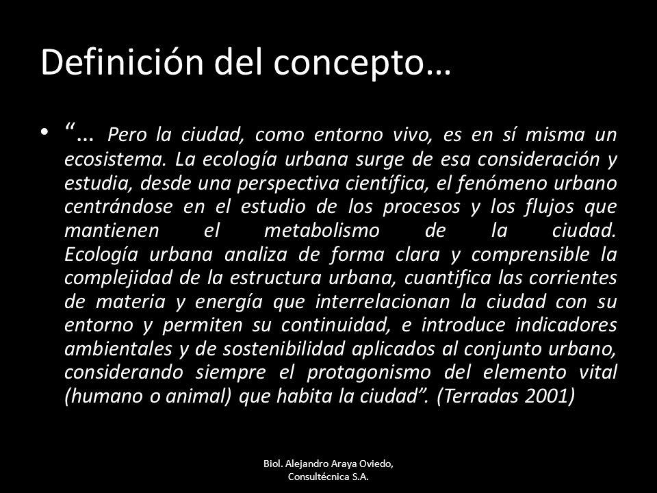 Definición del concepto… … Pero la ciudad, como entorno vivo, es en sí misma un ecosistema. La ecología urbana surge de esa consideración y estudia, d