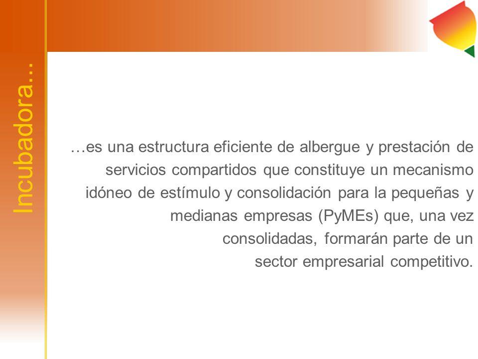 Incubadora... …es una estructura eficiente de albergue y prestación de servicios compartidos que constituye un mecanismo idóneo de estímulo y consolid