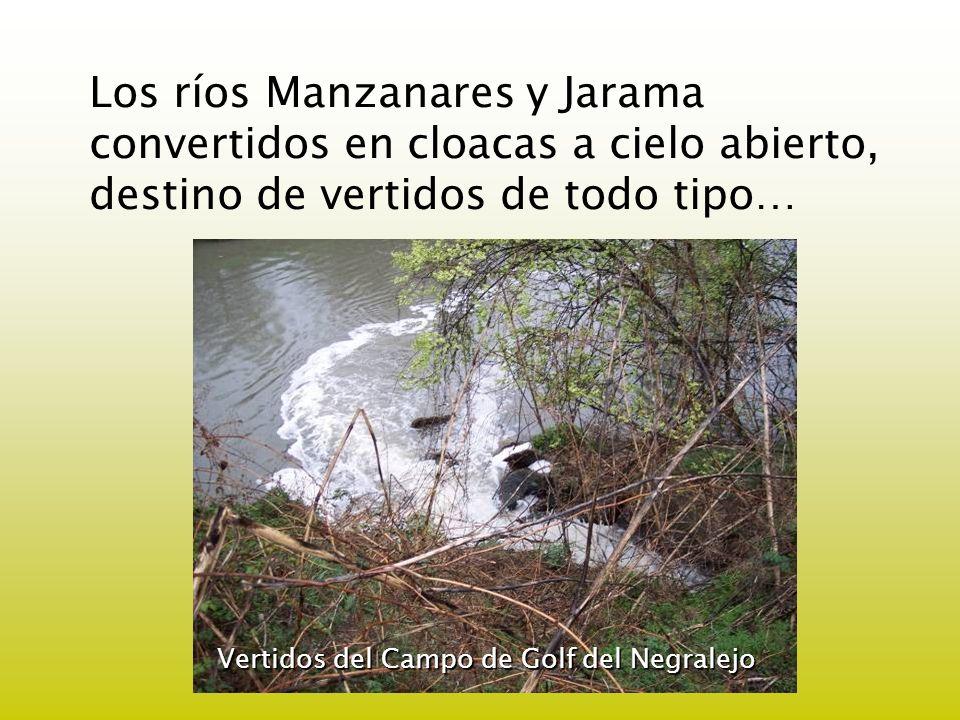 Los ríos Manzanares y Jarama convertidos en cloacas a cielo abierto, destino de vertidos de todo tipo… Vertidos del Campo de Golf del Negralejo