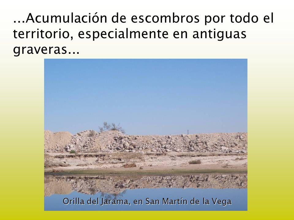 ...Acumulación de escombros por todo el territorio, especialmente en antiguas graveras... Orilla del Jarama, en San Martín de la Vega