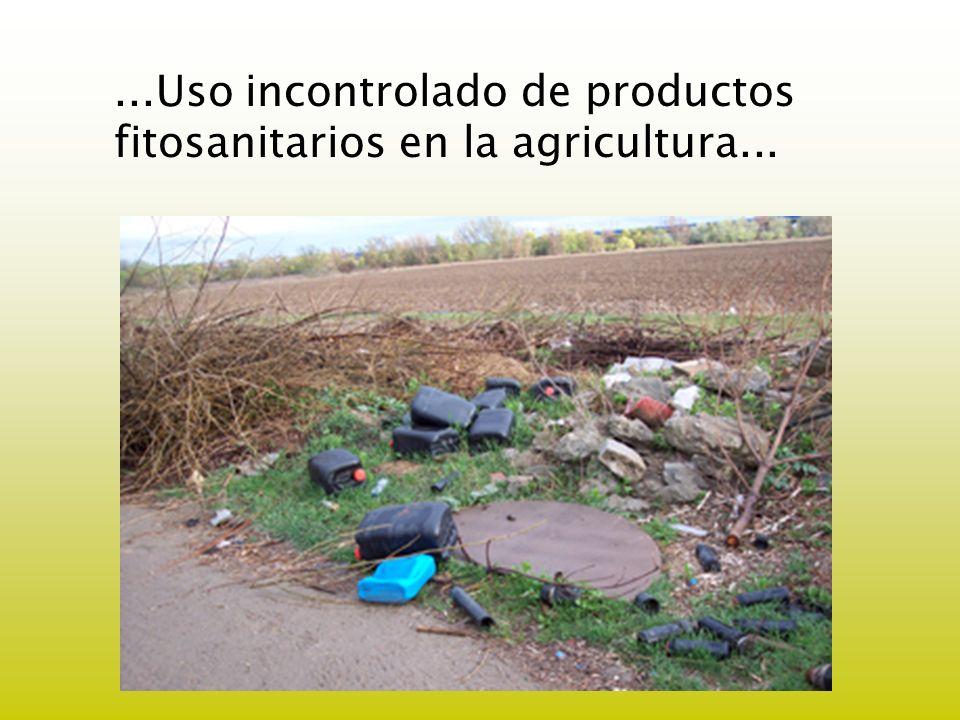 ...Uso incontrolado de productos fitosanitarios en la agricultura...
