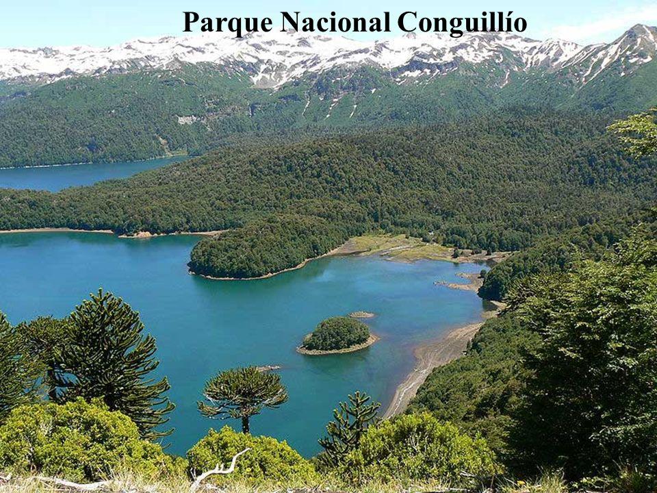 Hacia el noreste, con el volcán Llaima en el centro, está el espectacular Parque Nacional Conguillío, llamado también