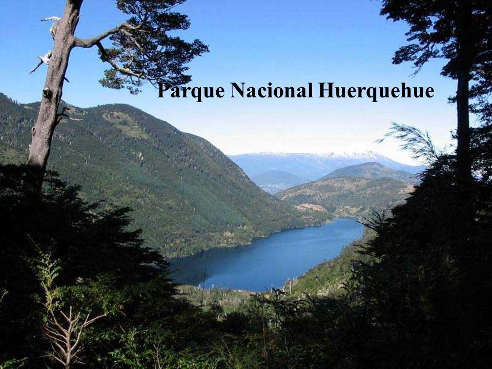 El Parque Nacional Huerquehue, con sus innumerables lagunas y una frondosa vegetación; y para quienes gustan de las propiedades terapéuticas de las ag