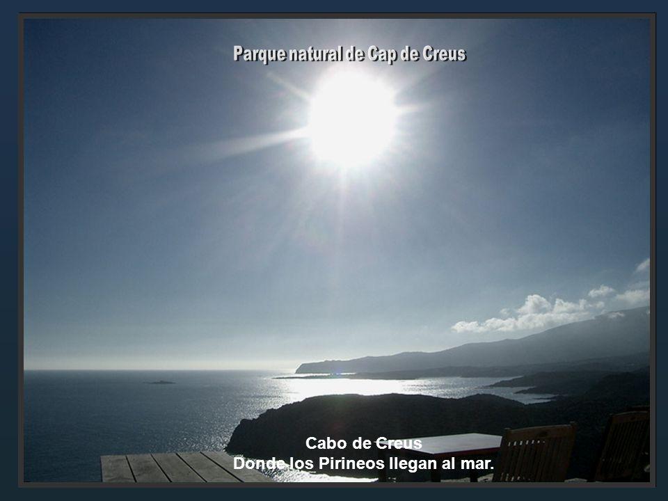 Volcán Sta. Margarida