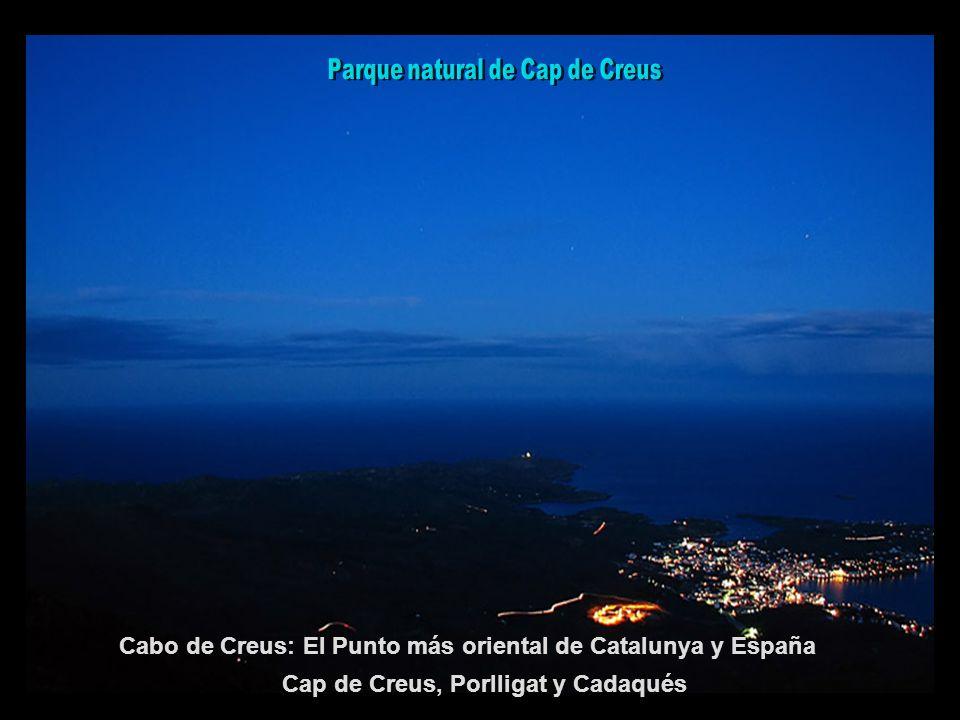 Cabo de Creus Donde los Pirineos llegan al mar.