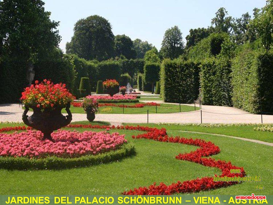 JARDINES DEL PALACIO SCHÖNBRUNN – VIENA - AUSTRIA